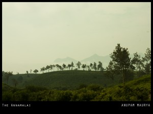 the annamalai
